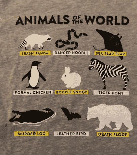 animals of the world trash panda sea flap flap