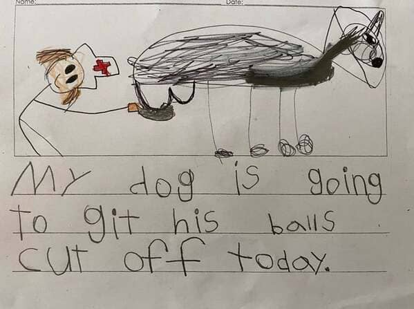 kids drawing my dog is git his balls cut off funny r/funny