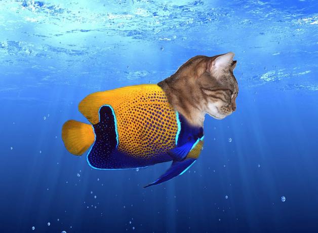 The 20 Funniest Visual Puns Ever Worldwideinterweb