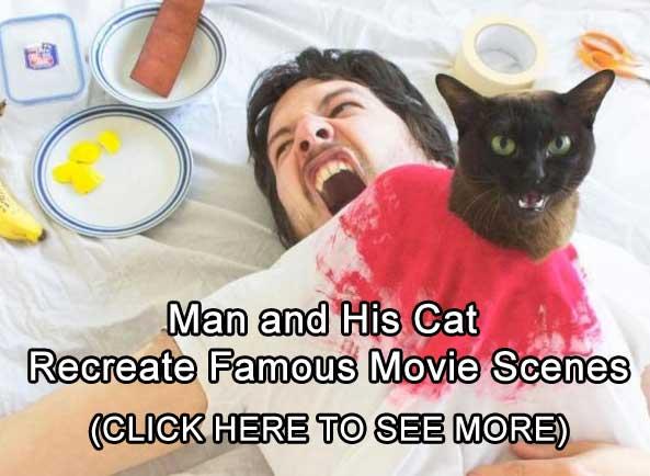 man-cat