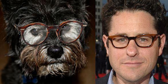 celebrity dog