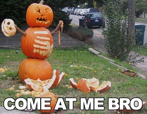 The 50 Funniest Halloween Memes Of All Time (GALLERY ...