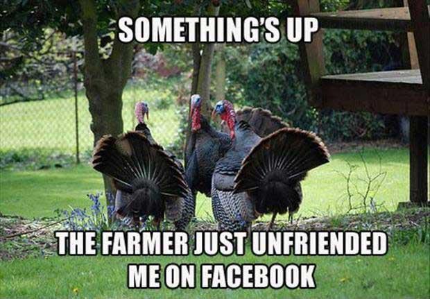 thanksgiving dinner meme 1 the 20 funniest thanksgiving memes ever worldwideinterweb
