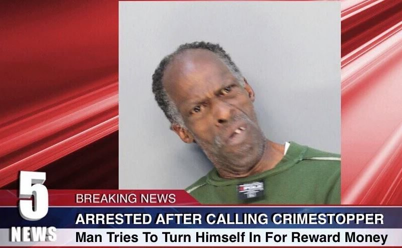 funniest local news captions 2015