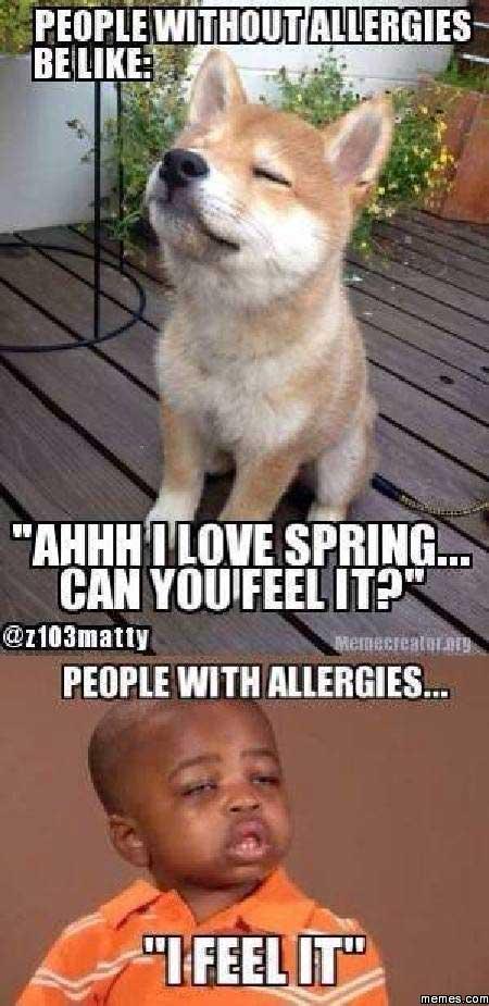 It's Springtime... In A Kinda Sorta Way (GALLERY)