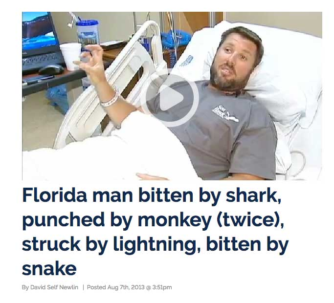 florida-man-monkey