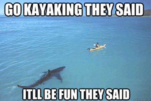 shark-attack-pictures