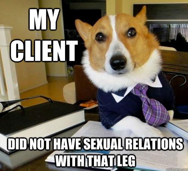 dog-lawyer