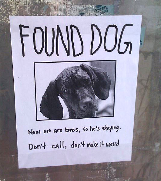The Funniest Lost Found Signs Ever GALLERY WorldWideInterweb - 20 hilarious lost pet signs