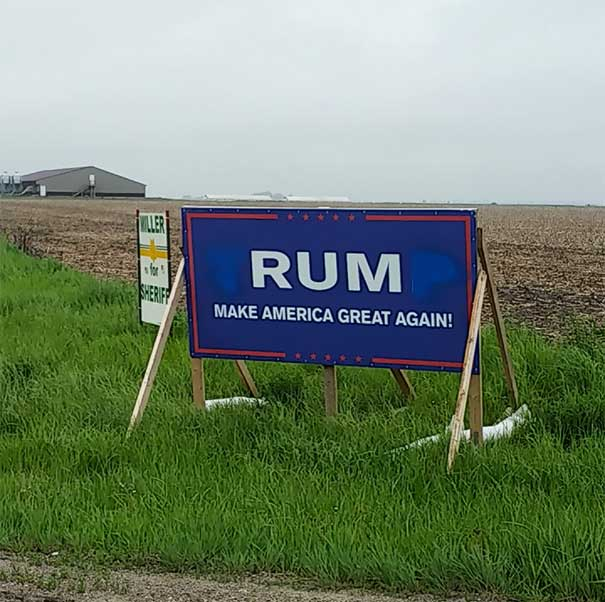 25 Funny Voting Signs That Might Motivate You To Vote ...