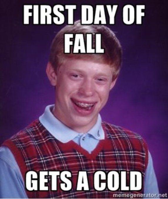 best fall memes all time 1 fall memes\