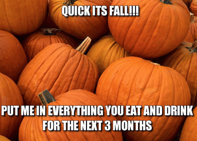 """Fall Memes"" That Will Make You ""Fall"" in Love with Fall ..."