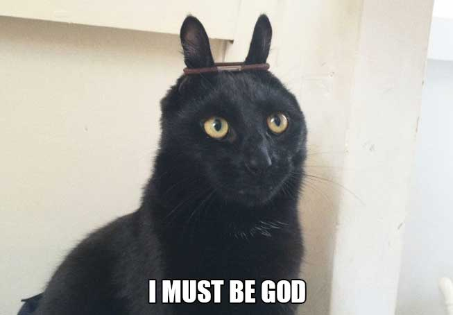 cat-thoughts-god