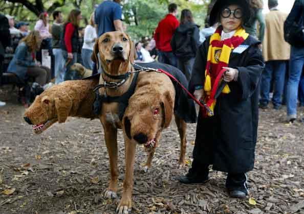best halloween costume ideas 2014 & The 100 Greatest Halloween Costumes Ever | WorldWideInterweb