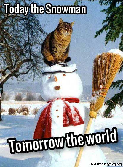 break time memes the 50 funniest winter memes of all time (gallery) worldwideinterweb