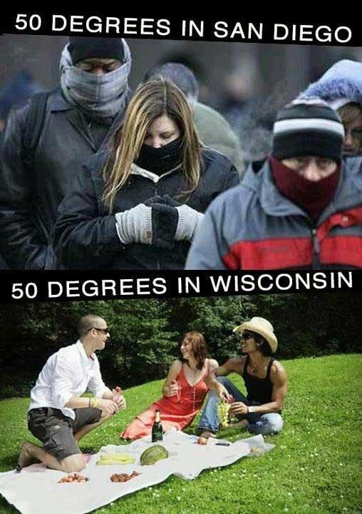 meme winter