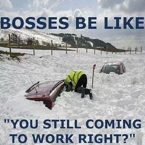 snow meme boss