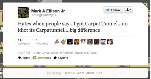 carpet tunnel