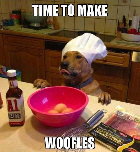 woofles funny dog meme