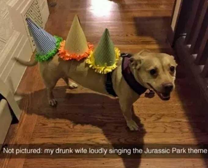 jurassic park dog meme