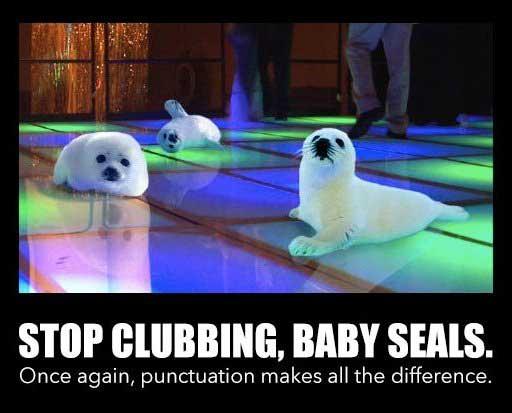 clubbing-baby-seals-meme