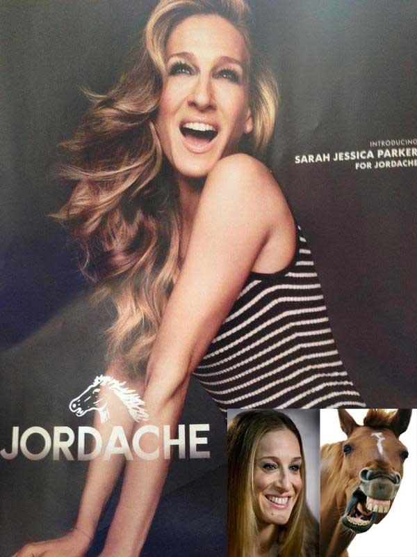 sarah-jessica-parker-horse-jordache