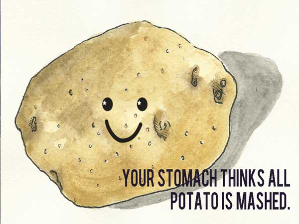 smartest internet quote