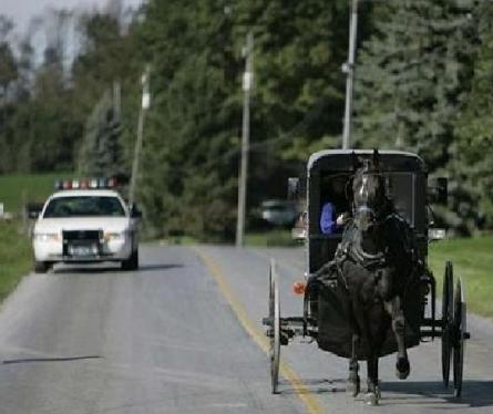 amish police