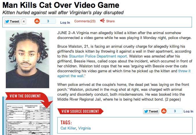 cat-video-game-headline