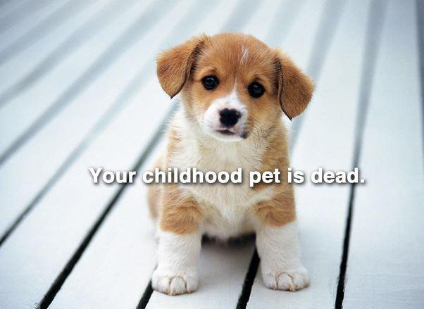 childhood pet is dead