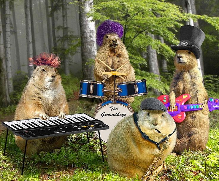 groundhog-day-band