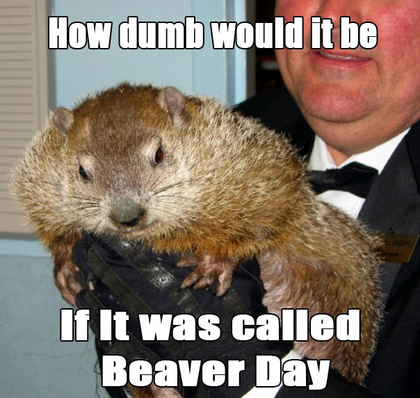 groundhog-day-meme