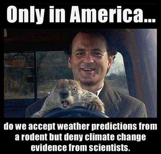 groundhog-day-memes