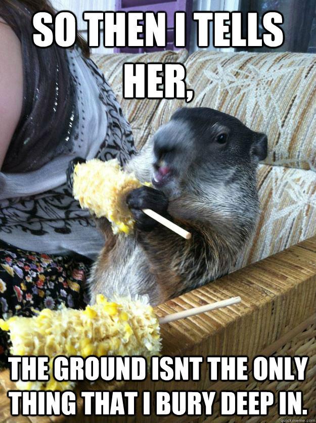 groundhog-meme