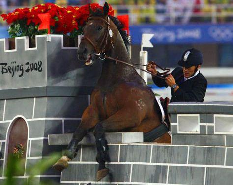 horse fail photos