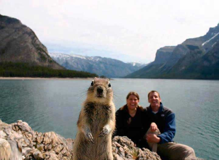 most-viral-pictures-of-all-time