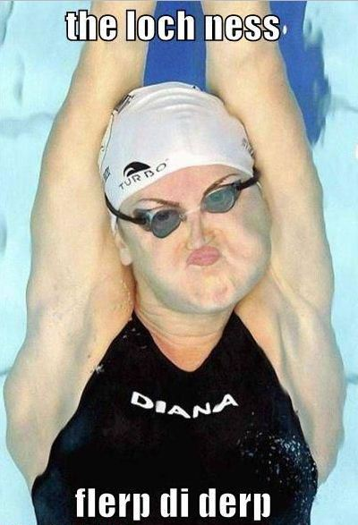 olympics swimming gallery