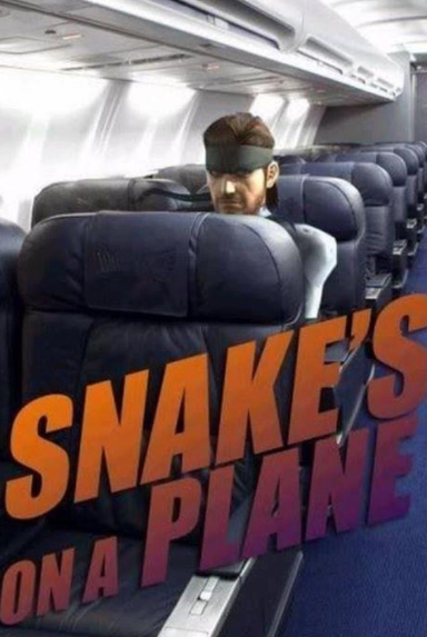 solid snake on a plen
