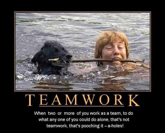 teamwork-dog