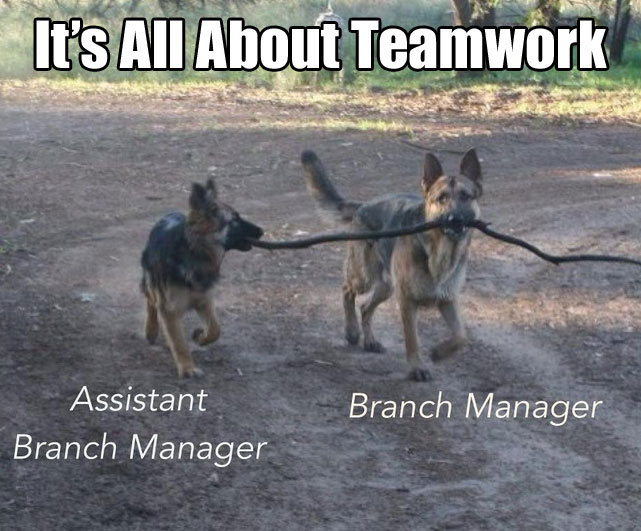 Funny Manager Meme : It's all about teamwork 20 pictures worldwideinterweb