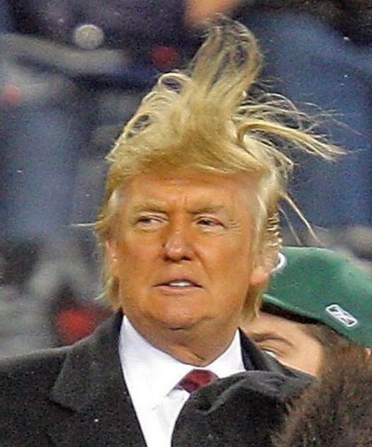 trump hair bad