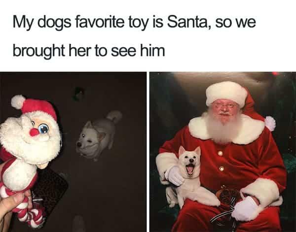 santa dog meme