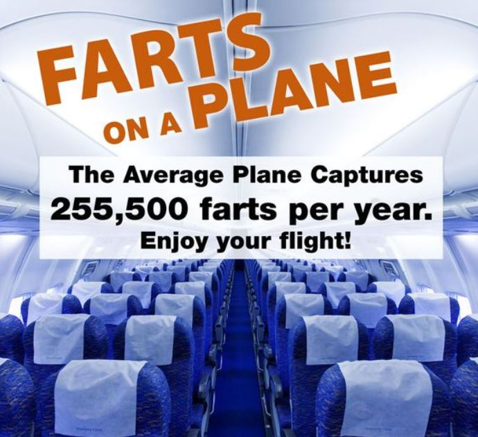 Passenger Wouldn't Stop Farting