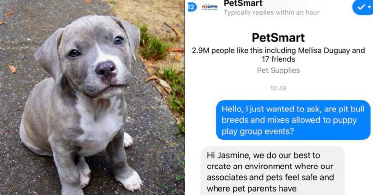 Pet Owners Outraged To Learn That Petsmart Does Not Allow Pit Bulls