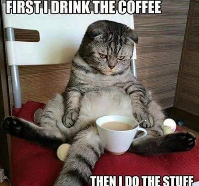 first i drink the coffee meme