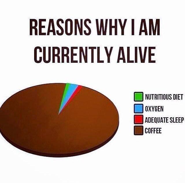 funny reasons i am still alive coffee meme