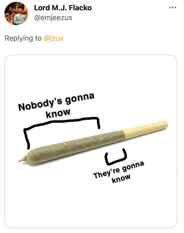 Funny joint memes, jokes about social anxiety, hilarious meme about what it's like to get high, smoke a blunt, 420, drugs, twitter
