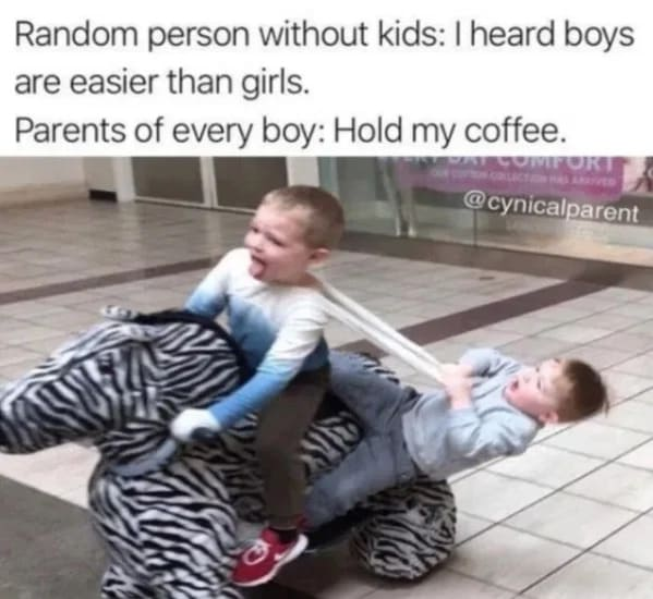 raising boys is easier, funny parenting memes, kids, jokes
