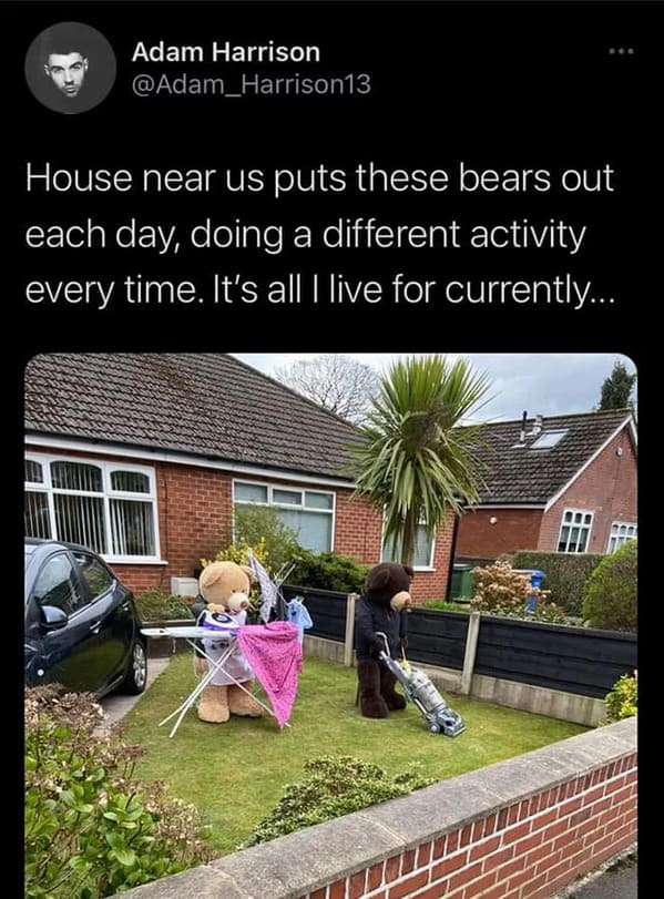 tweet with stuffed animal bears doing housework on front lawn, Uplifting wholesome images, nice pictures of animals and people, humanity restored, wholesome pics, reddit, r wholesome, funny cute animals, feeling good