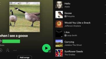 weird spotify playlists